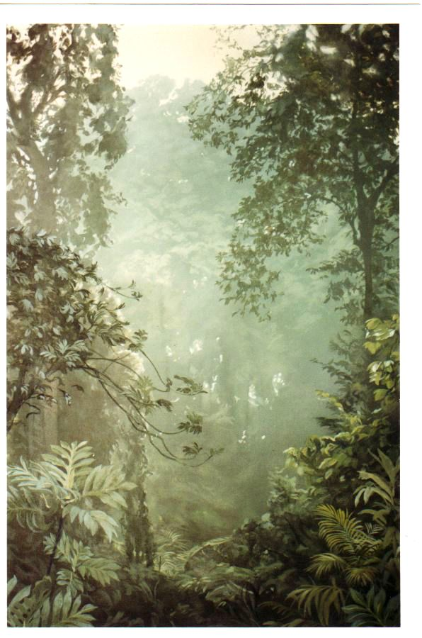 Jungle Landscape Mural