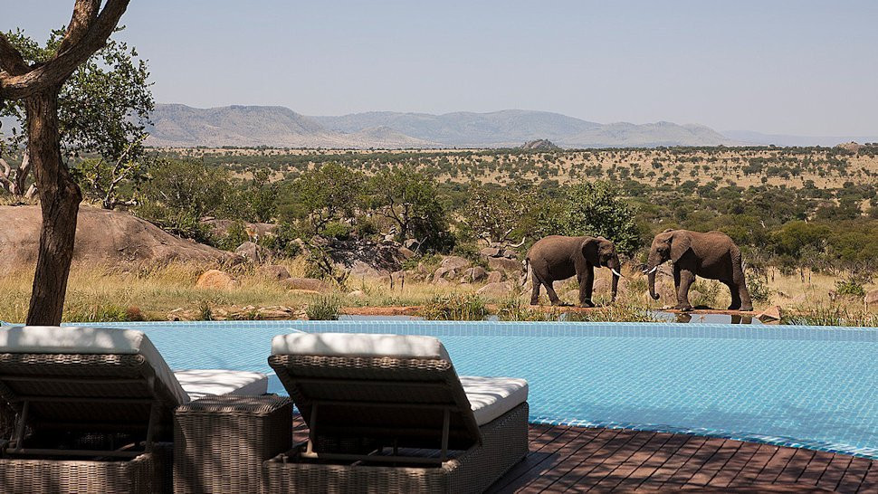 Pool in the Serengeti overlooking the elephants.