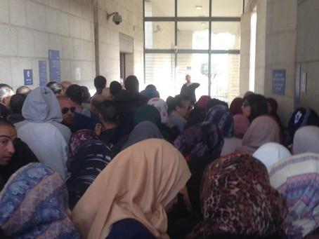 اللغة العربية في مكتب التشغيل