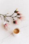 cup-of-coffee-and-blooming-branch-421088