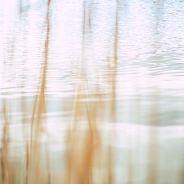 wood-light-nature-art-2061170.jpg