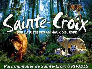 Grand Jeu Concours NOEL