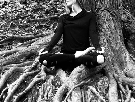 Developing A Meditation Practice