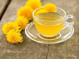Benefits of Drinking Dandelion Tea