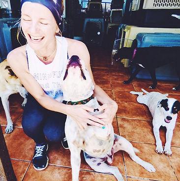 rescue dogs volunteer