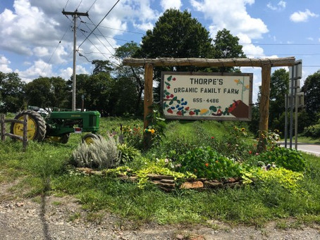 Who Supplies Anabel's Grocery: A Brief Look at Our Local Farmers