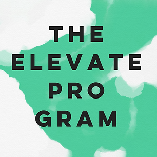 theelevateprogram.png
