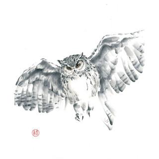Размах крыльев