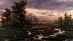 """""""Wetlands"""""""
