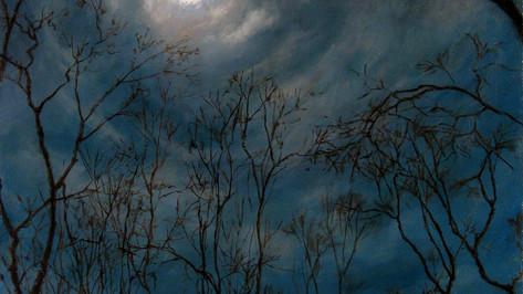 """Night Owl"""