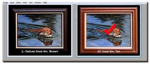 buyer guide virtual framing insert A.jpg