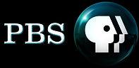 pbs logo text blue.jpg