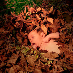 Bed of leaves - Child
