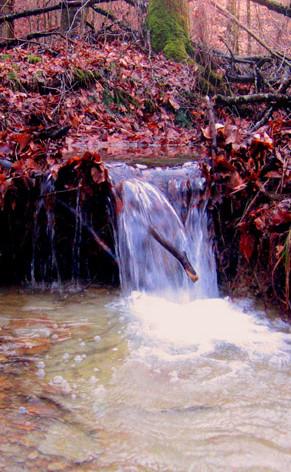 Waterfalls No.5