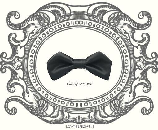 カットスクエア,エンド,cut,square,end,蝶ネクタイ,ボウタイ,ブランド,標本,通販,bow tie,specimens,types,brand,japan