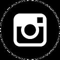 bowtie,specimens,instagram