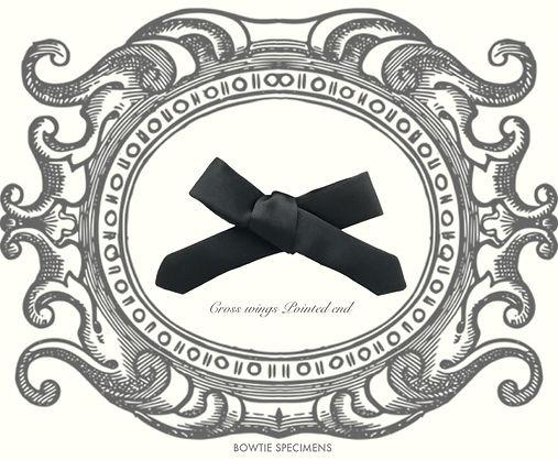 クロス,ウィングス,ポインテッドエンド,蝶ネクタイ,種類,ブランド,bow tie,history,pattern