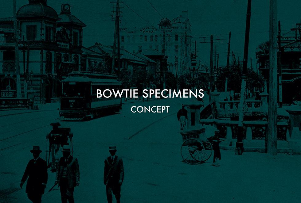 BOWTIE SPECIMENS Brand concept コンセプト