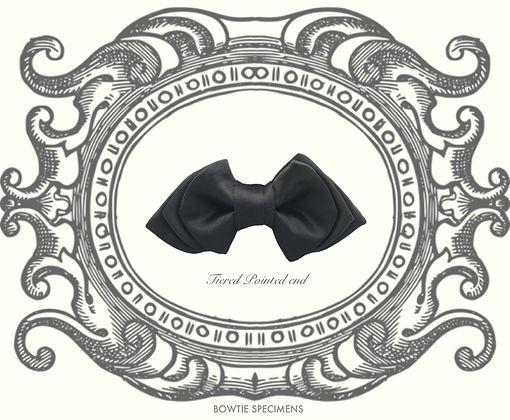ティアード,ポインテッド,エンド,蝶ネクタイ,ボウタイ,ブランド,標本,通販,bow tie,specimens,types,brand,japan