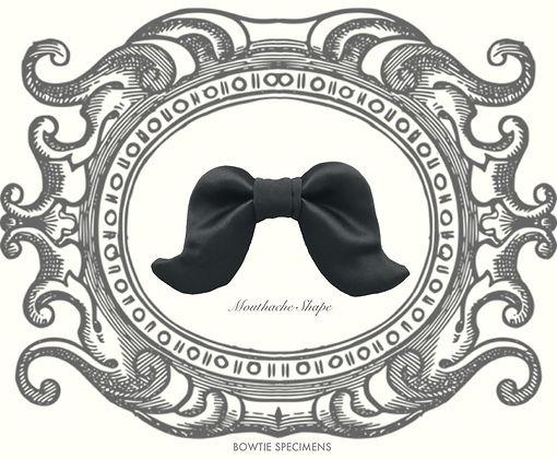 口ヒゲ形,Mouthache,Shaped,蝶ネクタイ,ボウタイ,ブランド,標本,通販,bow tie,specimens,types,brand,japan
