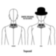 トラペゾイド,台形,trapezoid,蝶ネクタイ,ボウタイ,ブランド,標本,通販,bow tie,specimens,types,brand,japan
