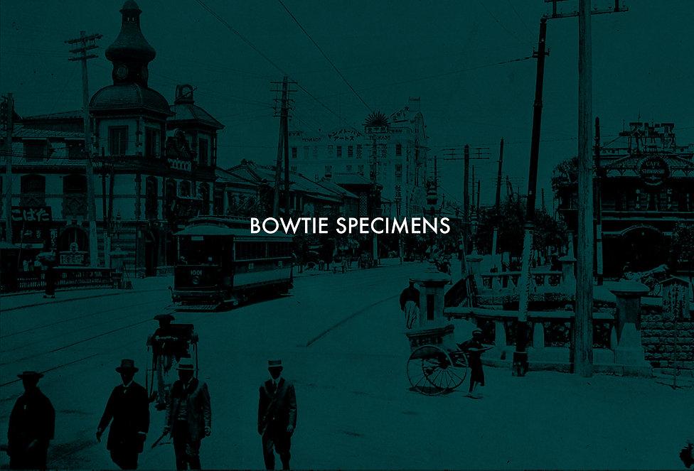 BOWTIE,SPECIMENS,Brand,concept,コンセプト