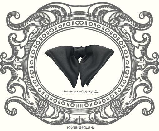 アゲハチョウ,Swallowtail,Butterfly,蝶ネクタイ,ボウタイ,ブランド,標本,通販,bow tie,specimens,types,brand,japan