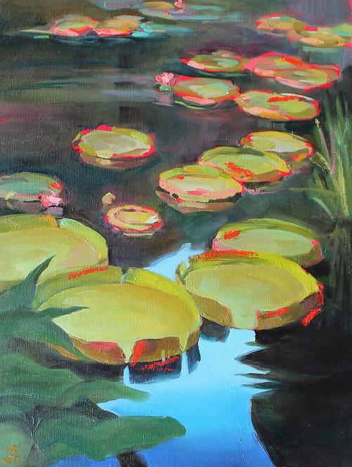 Idea of pond
