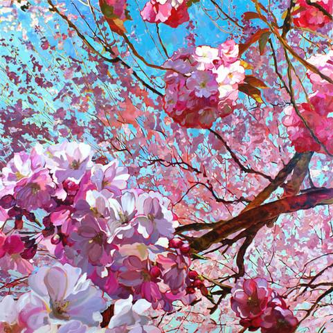 Eternal Spring5.jpg