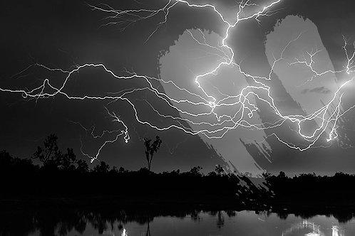 Wild Horse Lightning