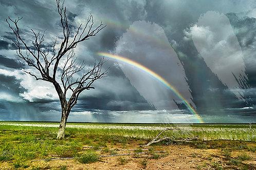 Rainbow - Barkely Tablelands