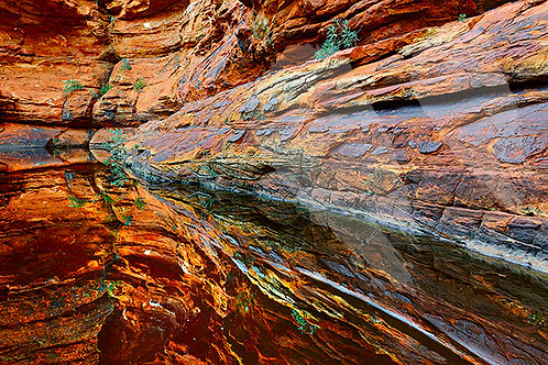 Garden of Eden, Kings Canyon, Watarrka National Park