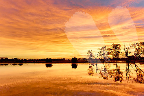 Yellow Water Sunset - Kakadu National Park