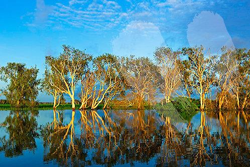 Yellow Water - Kakadu National Park