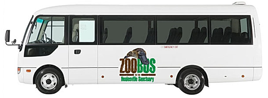 ZOOBUS direct bus service from Melbourne CBD to Healesville Sanctuary.