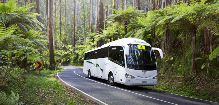 57 seater bus yarra valley.png