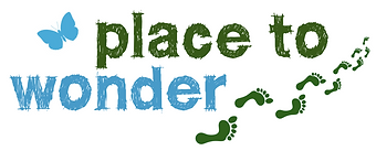 place to wonder logo.png