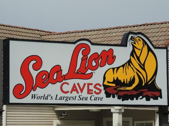 sea-lion-caves logo