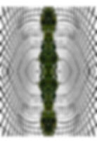 FC-1001Divine Vine II.jpg
