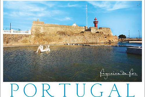 Figueira 10