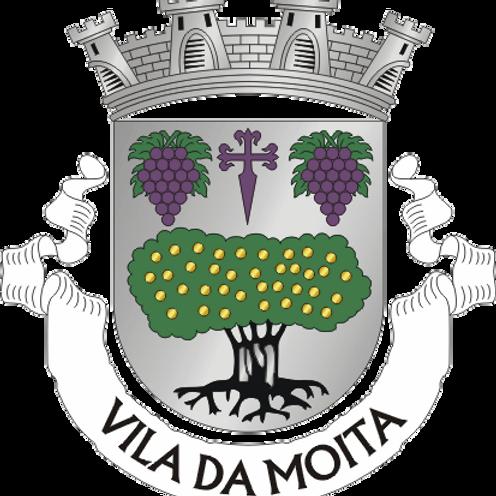 Autocolante Vinil - embª 24 - Moita
