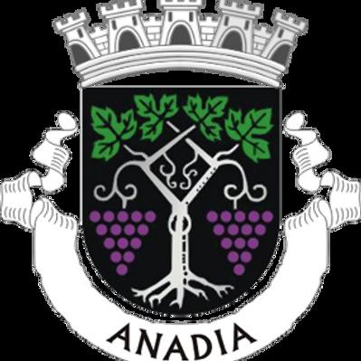 Autocolante Vinil - embª 24 - Anadia