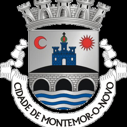 Autocolante Vinil - embª 24 - Montemor-o-Novo