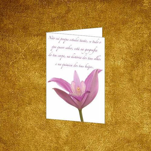Mini Cartão com envelope - embª 12 - refª 01