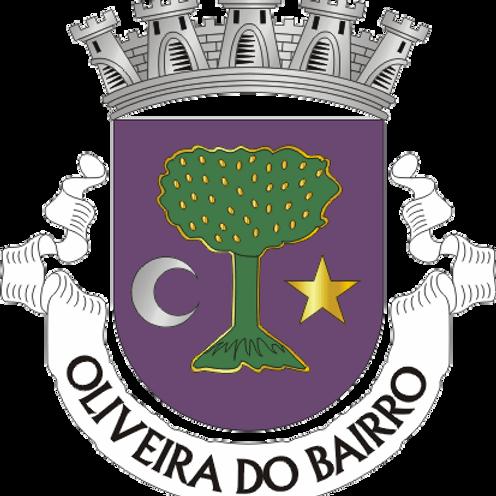 Autocolante Vinil - embª 24 - Oliveira do Bairro