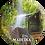 Thumbnail: íman 58 Madeira 15 - embª 12
