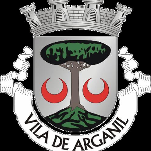 Autocolante Vinil - embª 24 - Arganil