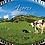 Thumbnail: Íman oval 45x65 | Açores 10 | embª12