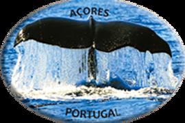 Íman oval 45x65 | Açores 17 | embª12