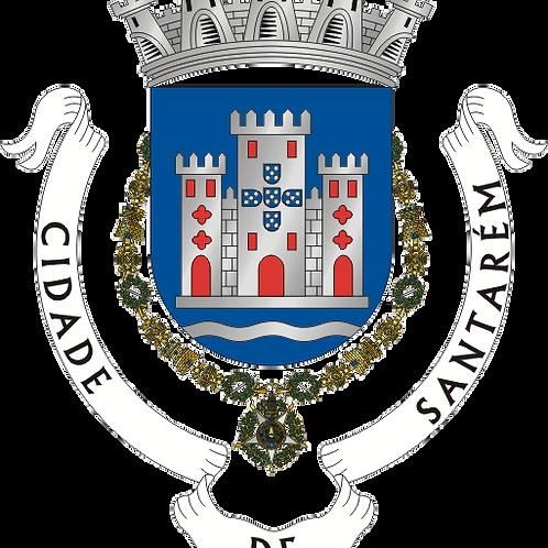 Autocolante Vinil - embª 24 - Santarém